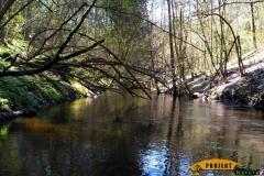 SOF kanu canoe drewniane 13