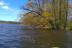 SOF kanu canoe drewniane 4