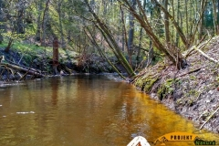 SOF kanu canoe drewniane 14