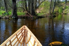 SOF kanu canoe drewniane 21